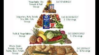 דיאטה מהירה ותזונה לצמחונים חלבונים מושלמים