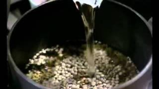 מג'דרה מאורז בשלושה צבעים - ליה שומרון