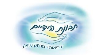 שי בן נון טיפול הוליסטי בתבונת הידיים- טיפול במגע