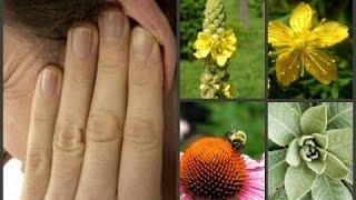 דלקת אוזניים איבחון וטיפול טבעי