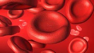 הגורמים לאנמיה והסימנים לחסר דם- אנמיה אפלסטית
