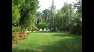 גן ירוק - צימרים במושב בית הילל -  צימרים בצפון