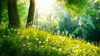 3 HOURS Of Relaxing Music - Relaxation Music, Spa, Sleep, Study, Background