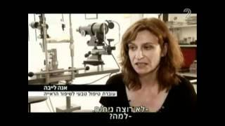 השיטה הטבעית לשיפור הראייה - שיטת בייטס