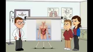 The HELP Video Guide To Gastroenteritis דלקת המעי - גסטרואנטריטיס