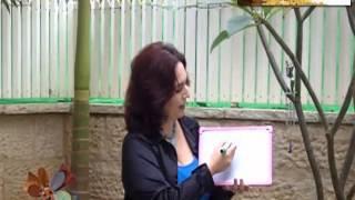 תטא הילינג 4 - איך משתמשים בתטא הילינג כדי לחיות בשפע?
