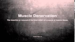 Medical Vocabulary: What Does Muscle Denervation Mean דנרבציה בשרירים