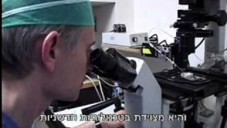 טיפולי פוריות- מרכז רפואי הדסה