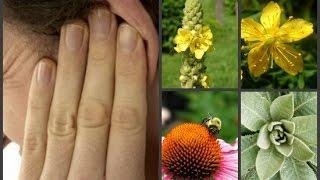 דלקות אוזניים ויטמינים מינרלים בטיפול טבעי