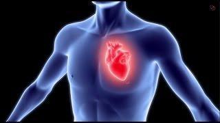 מחלות לב כליליות: המחלה, התסמינים והטיפול