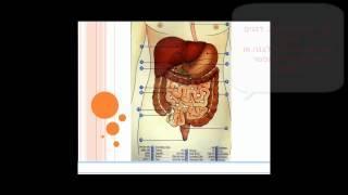 איך לרפא את מערכת העיכול הרובד הפיזי  תזונה מוארת