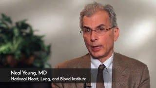 Cutting Edge Approaches To Aplastic Anemia Treatment אנמיה אפלסטית