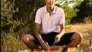 מתכון לדגים צלויים עם מנדרינה - שגב במטבח