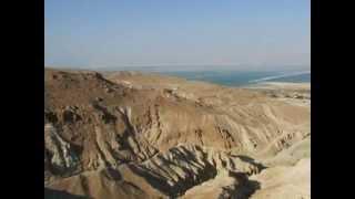 צימרים בית ספר שדה עין גדי - אירוח בים המלח | Www.zimmer.co.il