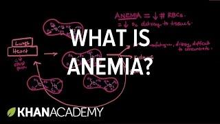 What Is Anemia אנמיה? | Hematologic System Diseases | NCLEX-RN | Khan Academy