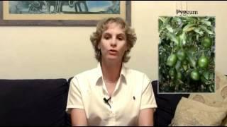 טיפול בפרוסטטה, טיפול טבעי ללא תרופות!