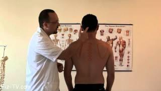 כאב באזור גב עליון, חלק 1