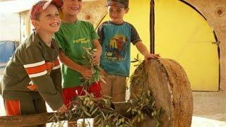 חי נגב | לינה, אטרקציות ופעילויות לכל המשפחה | חופשה בנגב | אירוח אקולוגי | Ecological Negev Hosting