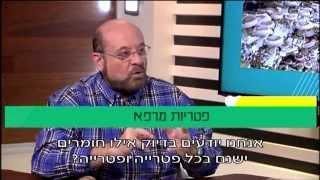 פרופ' קרסו עם נחשול כהן: פטריות מרפא והשימושים שלהן ברפואה המשלימה