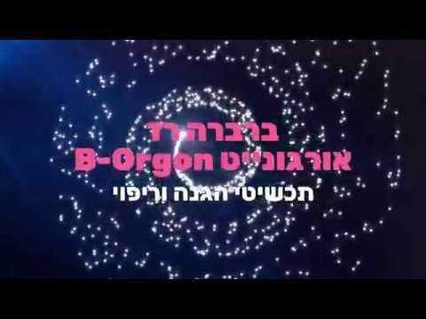 ברברה רז - אורגונייט תכשיטי מרפא