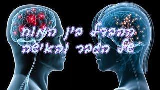 רות מנשה - ההבדל בין המוח של הגבר והאישה