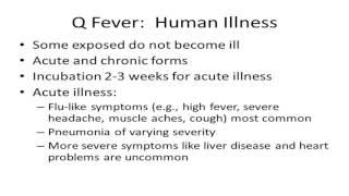 Q Fever Infection (Delete) קדחת קיו