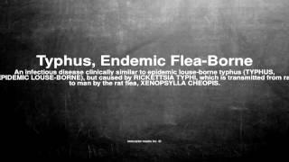 Medical Vocabulary: What Does Typhus, Endemic Flea-Borne Mean טיפוס אנדמי