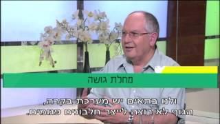 פרופ' קרסו עם פרופ' ארי זימרן: מהי מחלת גושה ואיך מטפלים בה?