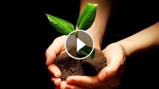 3 Hour Healing Meditation Music: Relax Mind Body, Soothing