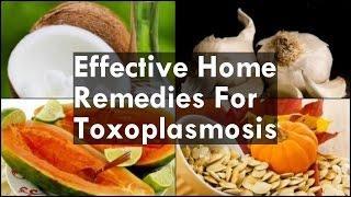 Home Remedies For Toxoplasmosis טוקסופלזמוזיס