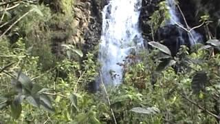 טיול מאורגן לגאוטמלה וקוסטה ריקה - איילה גיאוגרפית צילום:אסף אשל