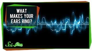 What Makes Your Ears Ring? טינטון אוזן פנימית