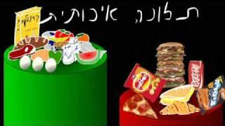 אלמנט התזונה - מבוא