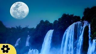 8 Hour Relaxing Music Sleep: Nature Sounds, Meditation Music, Relaxation Music, Soft Music ✿183C