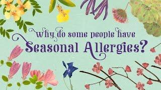 Why Do People Have Seasonal Allergies? - Eleanor Nelsen קדחת השחת - נזלת אלרגית