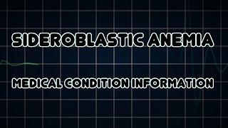 Sideroblastic Anemia (Medical Condition) אנמיה סידרובלסטית