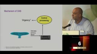 שלפוחית רגיזה ובוטוקס - 10 דק' על הבנת המחלה והטיפול בה מאת פרופ' קובי סתיו