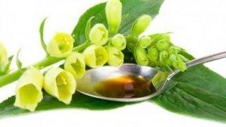 סוכרת טיפול בצמחים ותבלינים